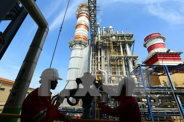 郑廷勇副总理要求越南油气电力总公司加快各发电项目的施工进度 hinh anh 1