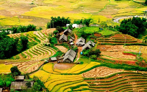 2017年前五个月老街省北河县接待游客量同比增长200% hinh anh 1