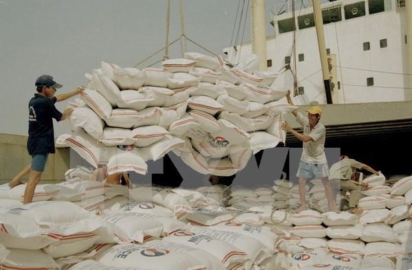 越南和孟加拉国续签大米贸易谅解备忘录 hinh anh 1