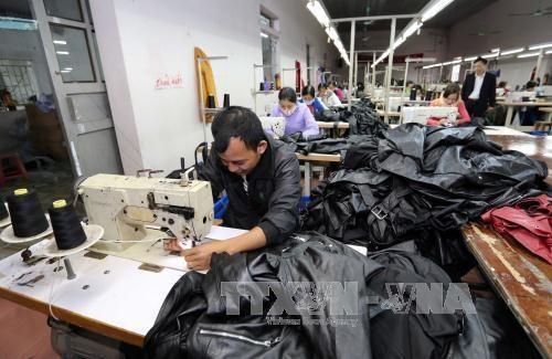 越南对美出口额有望超过400亿美元 hinh anh 1