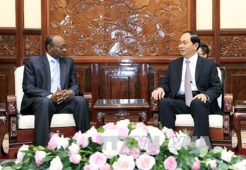 陈大光主席会见苏丹驻越大使 hinh anh 1