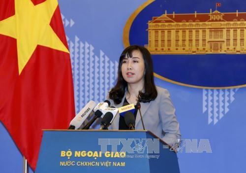 越南外交部发言人:采取必要措施保护海外越南公民 hinh anh 1