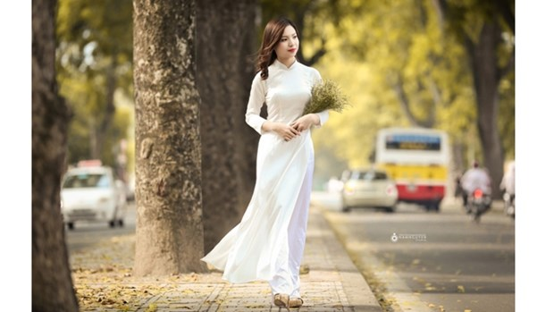 越南京族妇女的传统服装 hinh anh 1