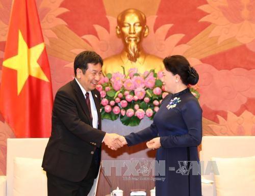 日本民进党代表团对越南进行访问 hinh anh 1