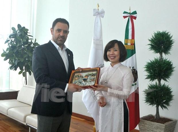 越南与墨西哥各地方加强合作 hinh anh 1