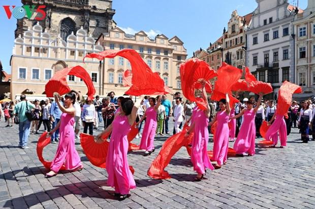 越南参加2017年捷克少数民族文化节 hinh anh 1