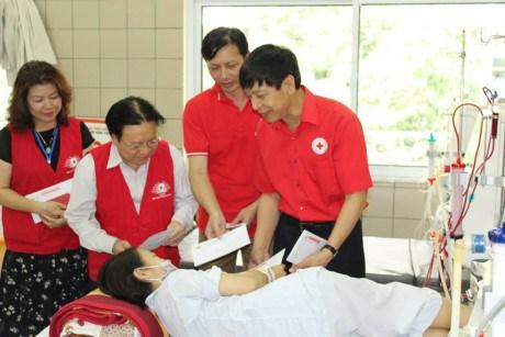 越南红十字会向和平省严重医疗事故中的患者提供援助 hinh anh 1