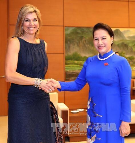 国会主席阮氏金银会见荷兰王后马克西玛 hinh anh 1
