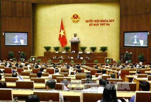 越南第十四届国会第三次会议发表第八号公报 hinh anh 1