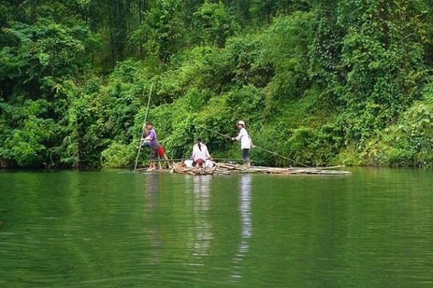 探索义安省浦末国家森林公园 hinh anh 2