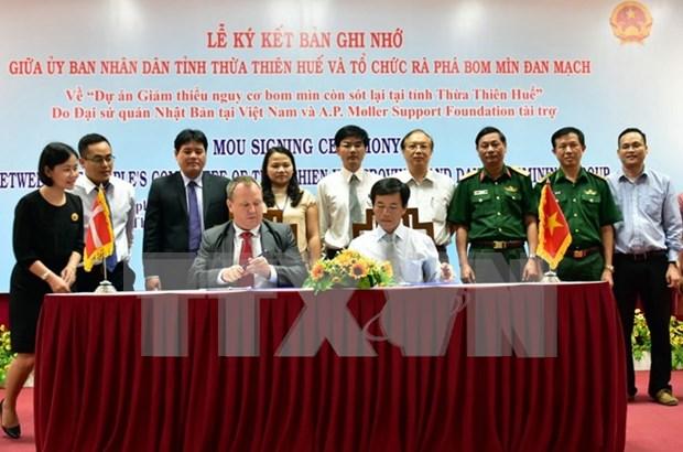 日本和丹麦为越南承天顺化省处理战争遗留爆炸物提供援助 hinh anh 1