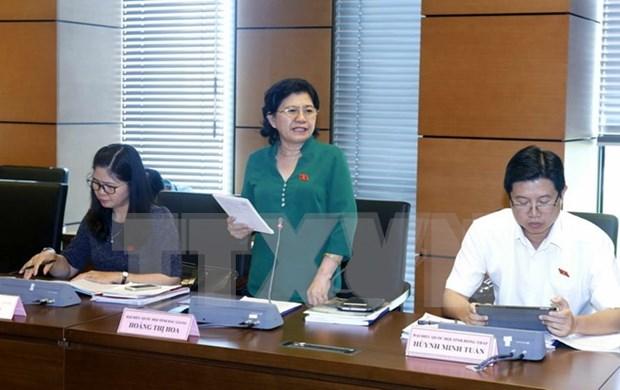 越南第十四届国会第三次会议:确保龙城国际航空港建设项目施工进度 hinh anh 1