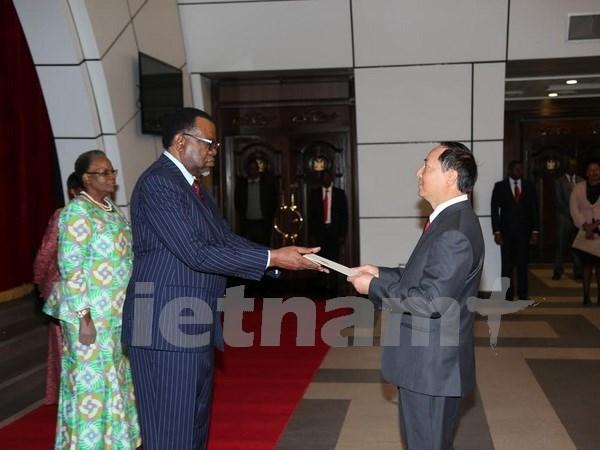 越南与纳米比亚促进互利合作 hinh anh 1