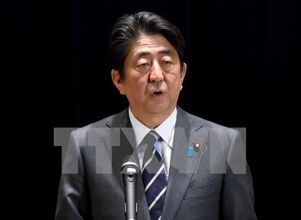 日本承诺加强与东盟关系 维护自由和开放的国际秩序 hinh anh 1