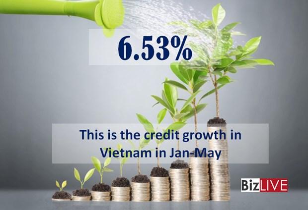 越南银行业贷款增长6.53% hinh anh 1