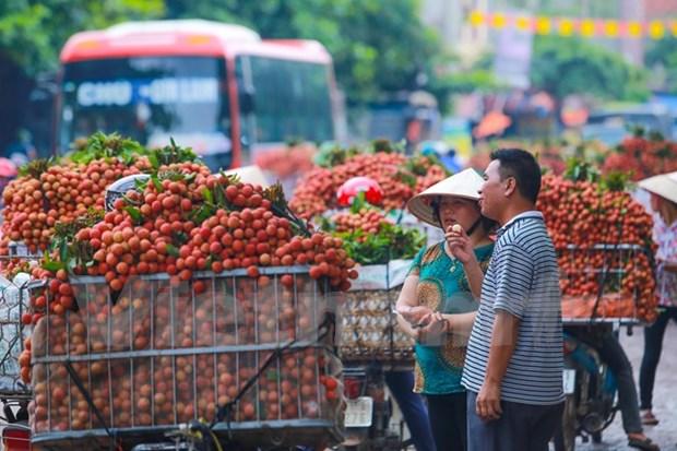 2017年越南北江荔枝销售促进会在中国举行 hinh anh 1