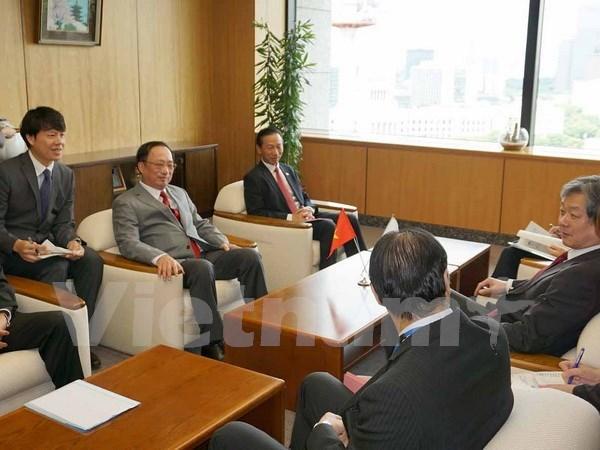 越南与日本加强打击犯罪的合作 hinh anh 1