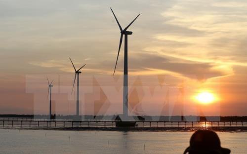 越南宁顺省加强风电和太阳能领域的国际合作 hinh anh 1