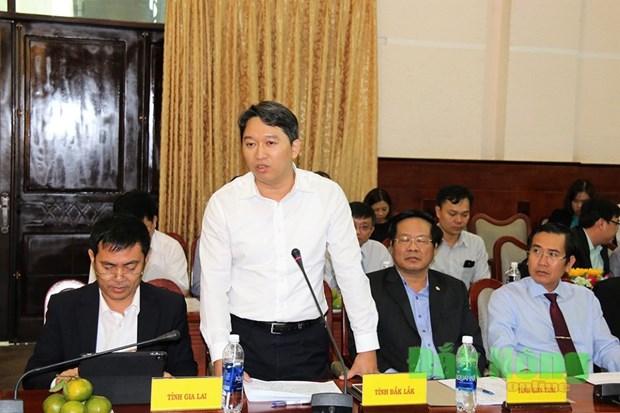 越南中部和西原地区有望成为外国投资者的投资乐土 hinh anh 2