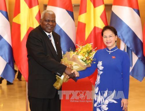 国会主席阮氏金银与古巴全国人民政权代表大会主席举行会谈 hinh anh 1