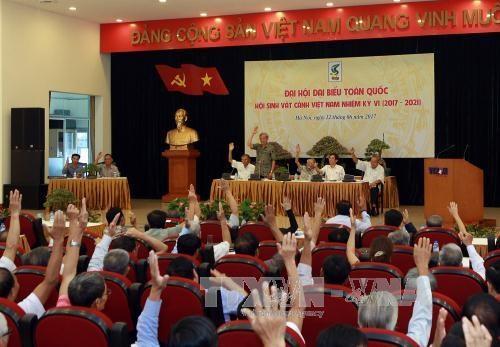 将观赏植物行业打造成为越南高经济价值的产业 hinh anh 1