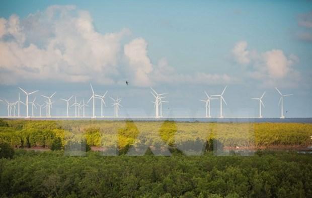 平顺省引进许多太阳能项目 努力成为全国能源中心 hinh anh 1