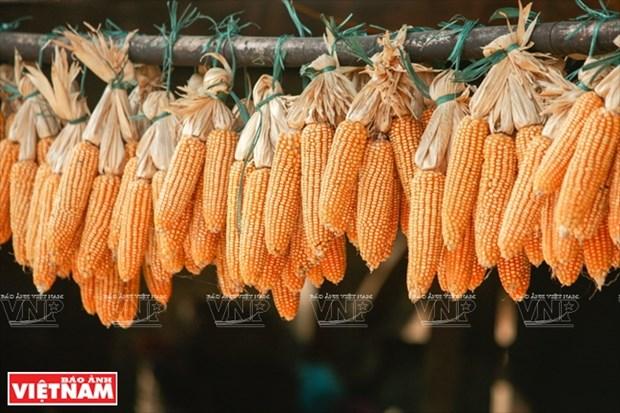 河江市的草屋村——国内外游客的有趣旅游点 hinh anh 10