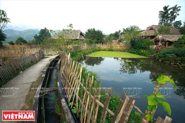 河江市的草屋村——国内外游客的有趣旅游点 hinh anh 17