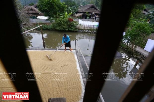河江市的草屋村——国内外游客的有趣旅游点 hinh anh 9