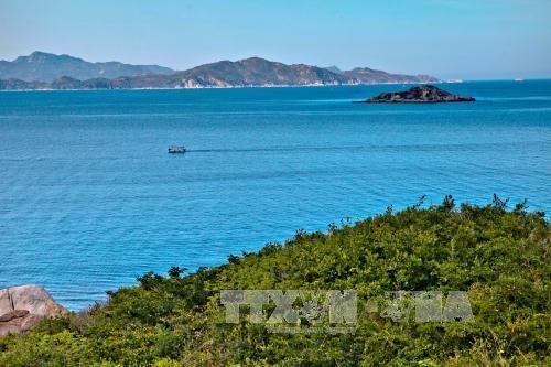 2017年越南海洋岛屿周:加大管理力度 充分挖掘海洋岛屿潜力 hinh anh 1