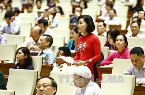 第十四届国会第三次会议:国会代表就4大内容对各位部长进行质询 hinh anh 2