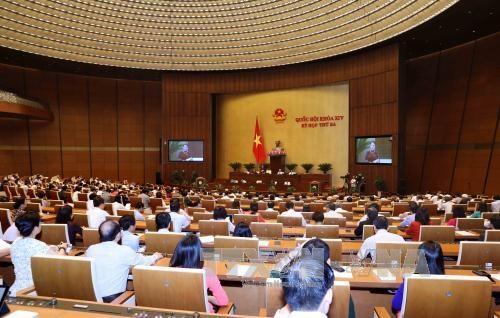 第十四届国会第三次会议:国会代表就4大内容对各位部长进行质询 hinh anh 3