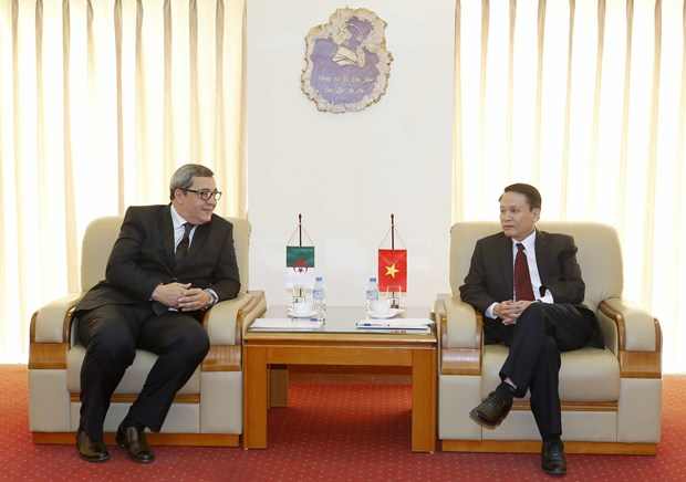 越南通讯社与阿尔及利亚国家通讯社加强合作 hinh anh 1