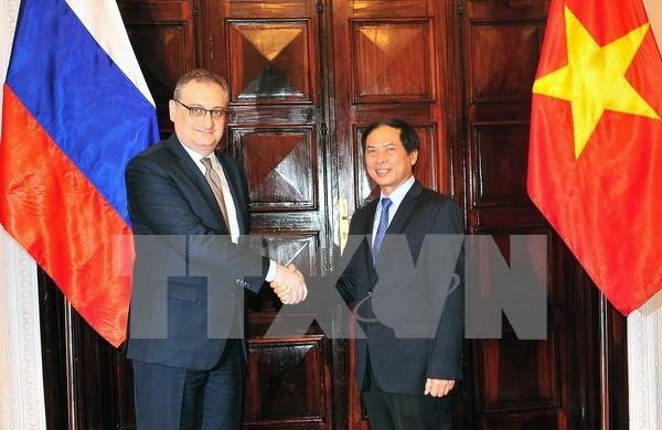 越俄第9次战略对话和外交副部长级政治磋商在河内举行 hinh anh 2