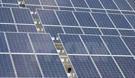 中盛光电集团希望在九龙江三角洲地区投资发展太阳能电池行业 hinh anh 1