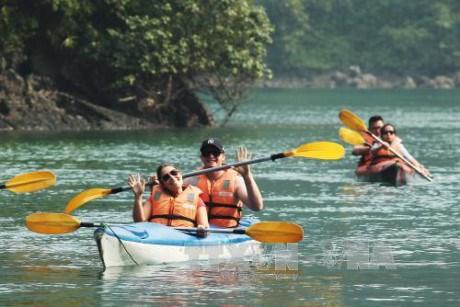 海防市力争成为北部沿海地区文化体育和旅游中心 hinh anh 1
