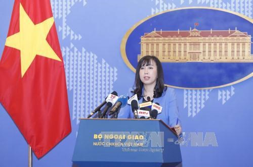 越南外交部发言人:未收到英国伦敦公寓楼火灾越南人伤亡的报告 hinh anh 1