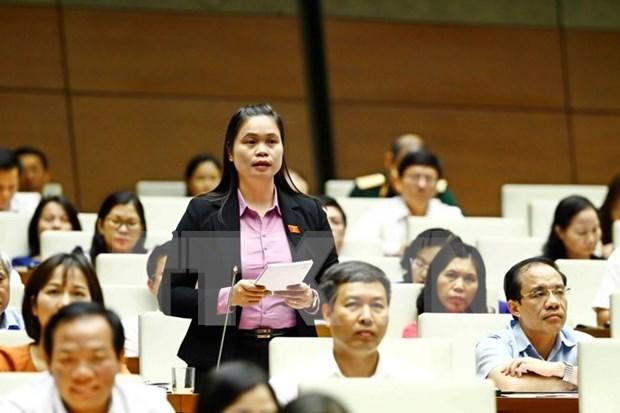 越南第十四届国会第三次会议发表第十九号公报 hinh anh 1