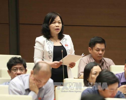 越南第十四届国会第三次会议发表第二十号公报 hinh anh 1
