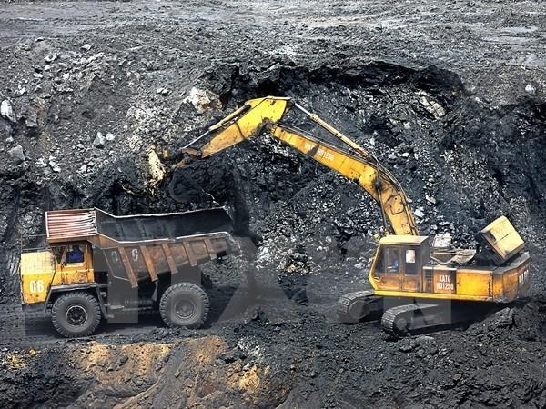 2017年前5月越南煤炭进口量达557万吨 hinh anh 1
