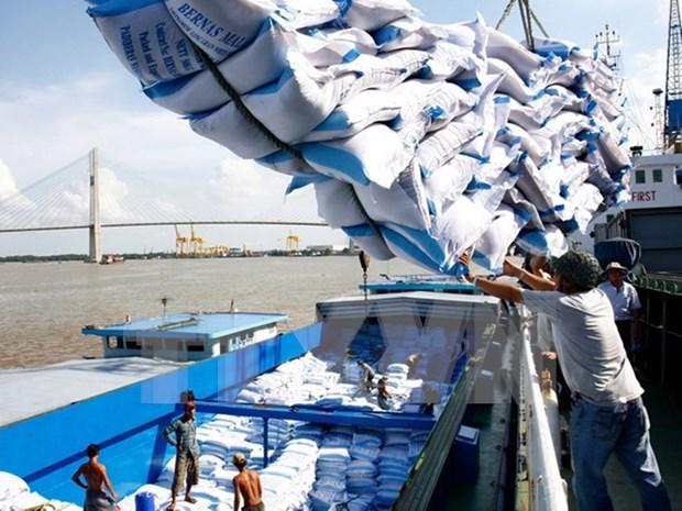 越南大米价格呈恢复上涨走势 hinh anh 1