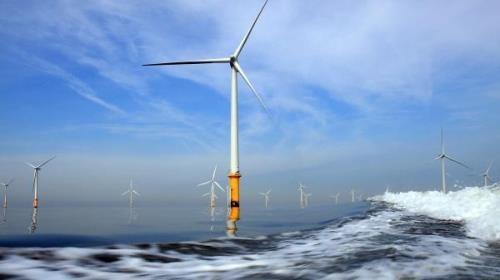 UPC Ranewables风电总公司对越南薄辽省的投资项目进行实地考察 hinh anh 1