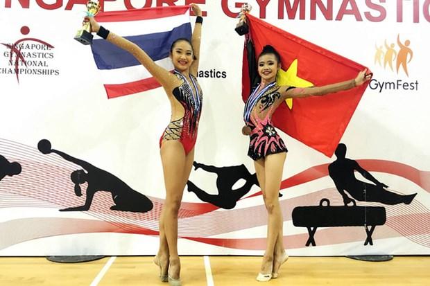 2017年东南亚青年艺术体操锦标赛:越南选手阮河梅夺金 hinh anh 1