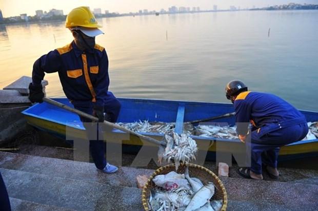 河内市将环保工作视为迫切任务 hinh anh 1
