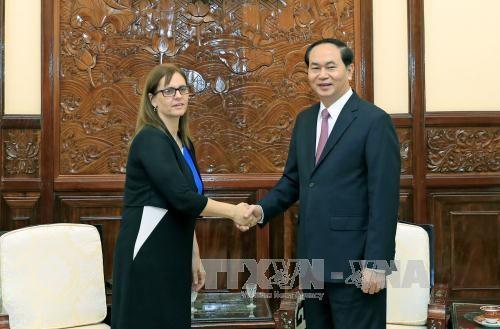 越南一向重视与以色列多方面合作关系 hinh anh 1