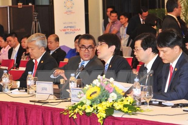 APEC可持续旅游高级政策对话会议充分体现越南的地位和作用 hinh anh 1