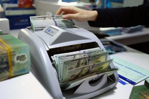 越南努力到2020年预算赤字不超过GDP的 3.5% hinh anh 1