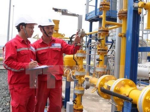越南油气电力总公司即将投资兴建9座燃气发电厂 hinh anh 1