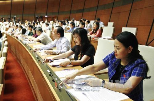 越南第十四届国会第三次会议通过《国家赔偿责任法》和《法律援助法》 hinh anh 1