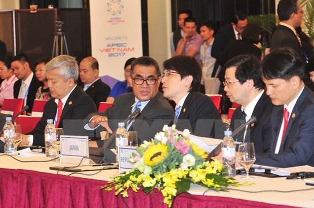 APEC力争2025年前接待国际游客量达8亿人次 hinh anh 2